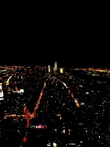 View of New York from the top of the Empire State Building.